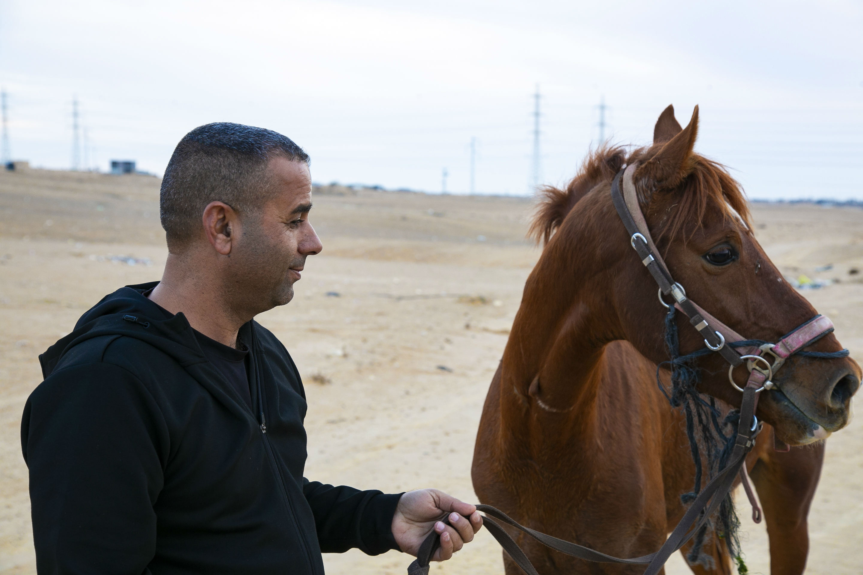 Mohammad Danfiri with a horse (MEE/Jack Dodson)