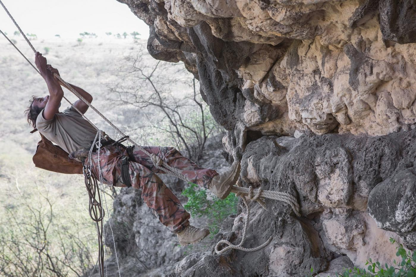 Honey hunter Mohammed Salem Guwas al-Kathery climbs a rocky spur to collect natural hives embedded in the cliff in Wadi Sheer (MEE/Sebastian Castelier)